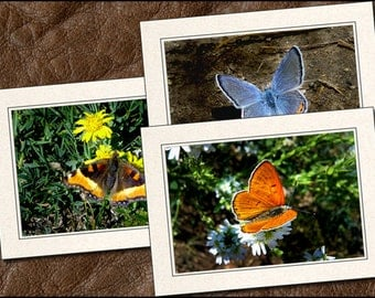 3 Butterfly Photo Note Cards Handmade Set - 5x7 Butterfly Note Cards Handmade - Butterfly Photo Greeting Card Handmade With Envelopes (BT1)