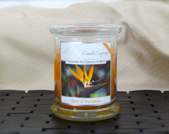 Bird of Paradise - Scented Soy Candles, Tropical Scented Candles, Miami Candles, Soy Coconut Candles, Mothers Day Gifts, Gifts for Her,