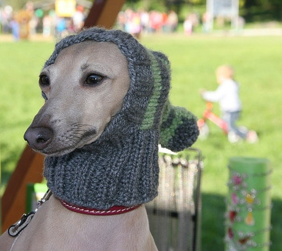 Knitting Patterns For Dogs Hats : Greyhound Hat / Italian Greyhound Hat / Greyhound Snood / Dog