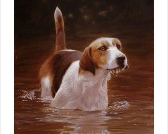 Foxhound cooling down in the river. Ltd Ed Print. Personally signed and numbered by award Winning Professional artist JOHN SILVER. jsfa014