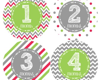 Monthly Stickers Monthly Baby Stickers Baby Month Milestone Stickers Baby Month Stickers Month to Month Bodysuit Stickers Shower Gift  386
