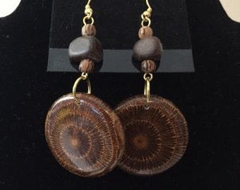 Mahogany Seed Earrings, Dangle Earrings, Mahogany Seed Wood Earrings, Natural Earrings, Natural Jewelry, Gold Plated Fish Hook Ear Wire,