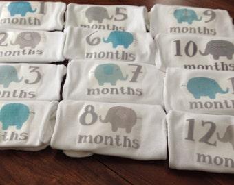 Monthly onesie set- Grey and Blue elephants