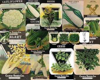 50 Vintage Seed Pack Images  Card Seed Company Digital Pack 1