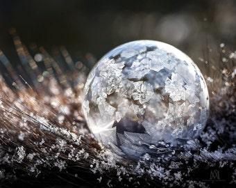 Frozen bubble on fur
