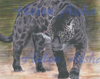 "Jaguar ""Protection"". PRINT of the original colored pencil drawing."