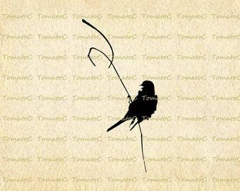 Bird on Tree Branch Silhouette Digital Image Download for Transfer Tea Towel Totes Pillows Tea Bag Tea Coaster Cushion T-Shirt.T310