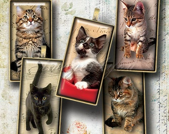 """Kittens & Cats Digital Collage Sheet 1x2"""" Domino Tile images 1x2 inch printable download cabochon 15x30mm, bamboo 0.75x1.5""""(19x38mm) pendant"""