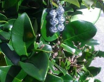 Steel Knot Earrings