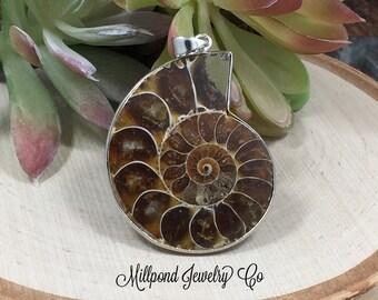 Ammonite Pendant, Nautiloid Pendant, Fossil Pendant, Shell Pendant, Natural Pendant, PS1108