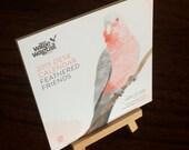 Desk Calendar 2015 Australian Birds