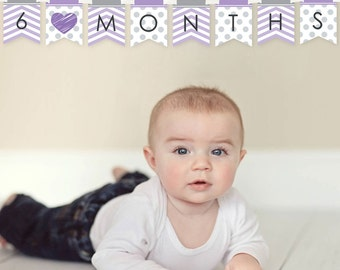 Purple Chevron First Year Banner - 12 Month by Month Photo Banner for Baby's First Year - Monthly Photo Prop