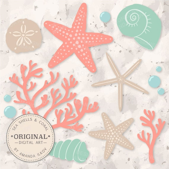 Premium Seashells Clipart & Vector Set Coral and by ...