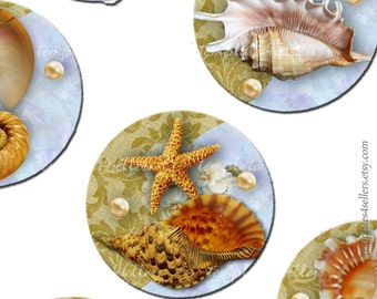 Digital Collage Sheet  Shell on Vintage Background 1 inch round original images Scrapbooking Pendants Printable 4x6 inch sheet  144