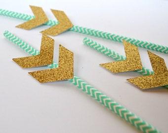 12 Arrow Straws