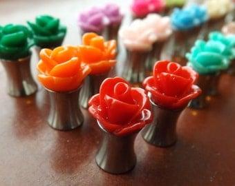 6mm rose plugs.