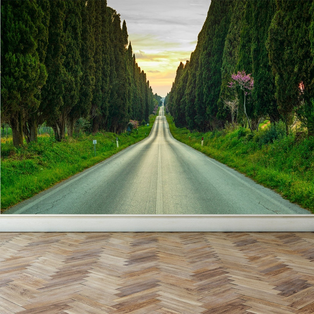 Wall mural evergreen cypress trees peel and stick for Cypress gardens mural