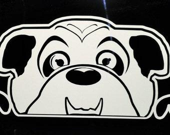 The Ruby C (English Bulldog) Window Decal