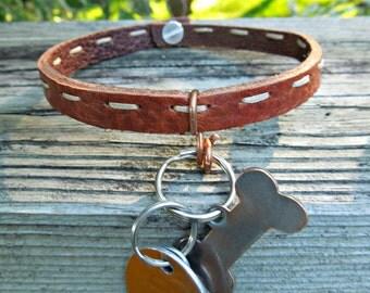 Leather & Copper Embellished Dog Collar