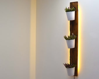 Backlit Reclaimed French Wagon Oak Vertical Planter / Wall Garden
