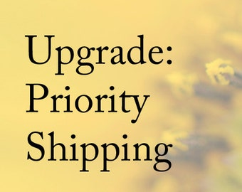 Priority Delivery - Upgrade for greeting cards