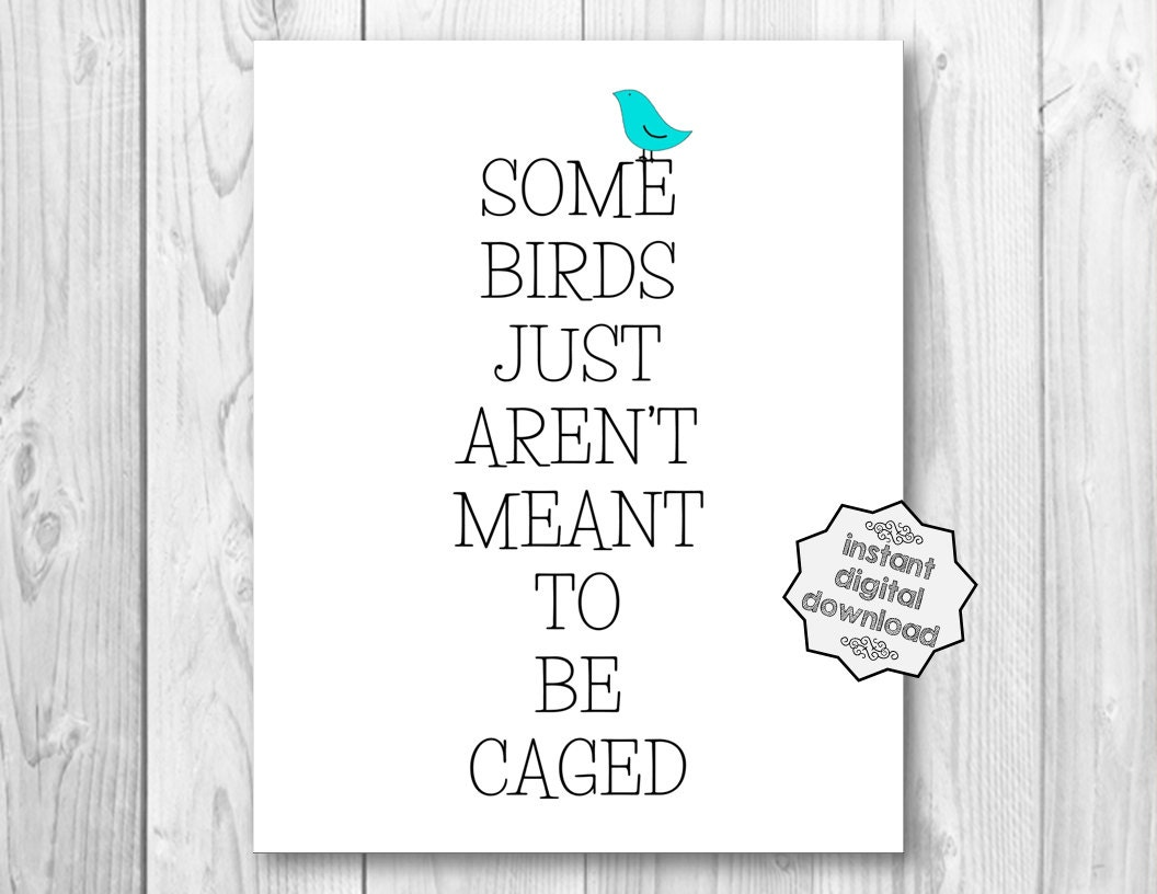 Some birds just aren 39 t meant to be caged whimsical bird for Some birds aren t meant to be caged tattoo
