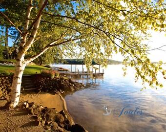 Lake Winnipesaukee, Photograph, Lakehouse, Birch Tree, Beach, Nautical, Lake Photo, New Hampshire, New England