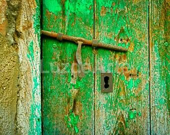 Henhouse door