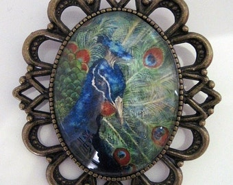 Brooch retro vintage portrait of Peacock large rockabilly pin up