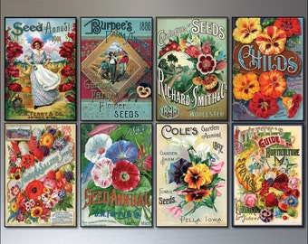 Vintage Botanical / Horticultural seed packet fridge magnets - set of 8