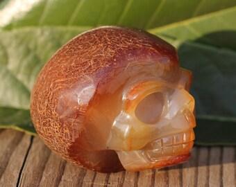 Natural Pretty surprising skull,Agate Crystal Skull,Crystal Healing J938