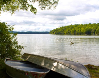 Row Boats by the Lake