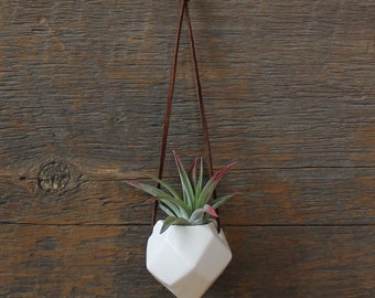 Hanging Faceted Porcelain Air Plant Vase -Plant Included-