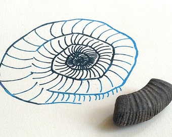 Gifts for geologists - Fossil and art gift set - real ammonite plus screenprint science gift
