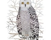 LARGE Snowy Owl Print, giclee print, woodland watercolor print, winter bird art, 13 x 19