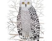 LARGE Snowy Owl Print, giclee print, woodland watercolor print, winter bird art, 13 x 19