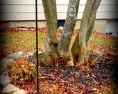 Black Wrought Iron Lawn and Garden  Slate Sign/Flag Holder/Multiple size slate holder/Slate Sign Wrought Iron Stake/Lawn Sign Stake