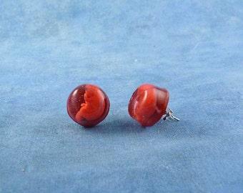 Fetus Encapsulated Specimen Earrings, Handmade Biology Jewelry