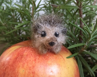 Needle Felted Hedgehog, Tiny