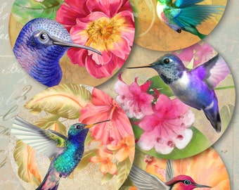 Printable download HUMMINGBIRDS, 2.5 inch size images Digital Collage Sheet for Pocket Mirrors cupcake toppers Paper Weights Gift tags