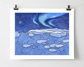 Belugas and Northern Lights 11x14 Illustration Print