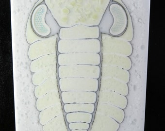 Phacops Trilobite Fused Glass Wall Panel