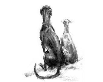Patience - two lurchers - fine art dog print  - fine art dog print - lurcher gift - sighthound sketch print