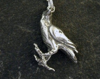 Sterling Silver Original Raven Crow Pendant on a Sterling Silver Chain.