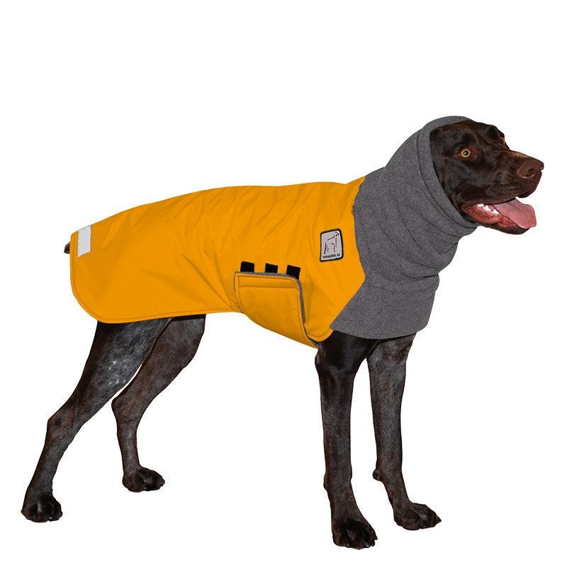 GERMAN SHORTHAIRED POINTER Winter Dog Coat Coat for Dogs