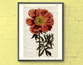 Summer Sale Peony in coral pink printed on Dictionary Page home decor wall hanging flower wall art Peony flower wall decor BFL108