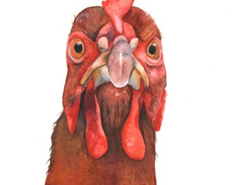 Chicken Original Watercolor Painting