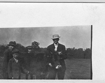 """Ca. 1920s """"Prize Cow"""" Real Photo Postcard - 543"""