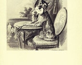 SCHNAUZER 1940s Dog Print, Puppy Print, Art Print, Home Decor, Book Plate, Black & White Antique Illustration, Wall Decor, Bedlington, A-11