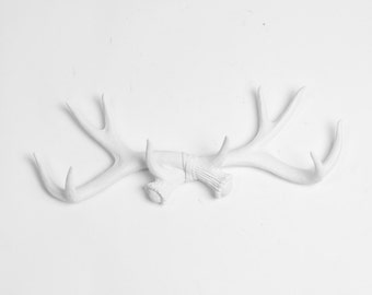 Decorative Antler Wall Mount - White Deer Wall Hook - Faux Antlers Decor - Hooks & Jewelry Organizer - Resin Holder by White Faux Taxidermy